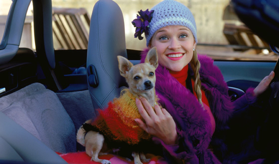 Desperate to Fit in? Elle Woods, Borat, and Buddy the Elf Show How It's Done Even When It's Difficult
