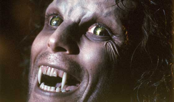 Werewolves Are Horror Staples So Why Are They So Consistently Weird?