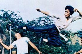 Karate Kicks Photo Quiz