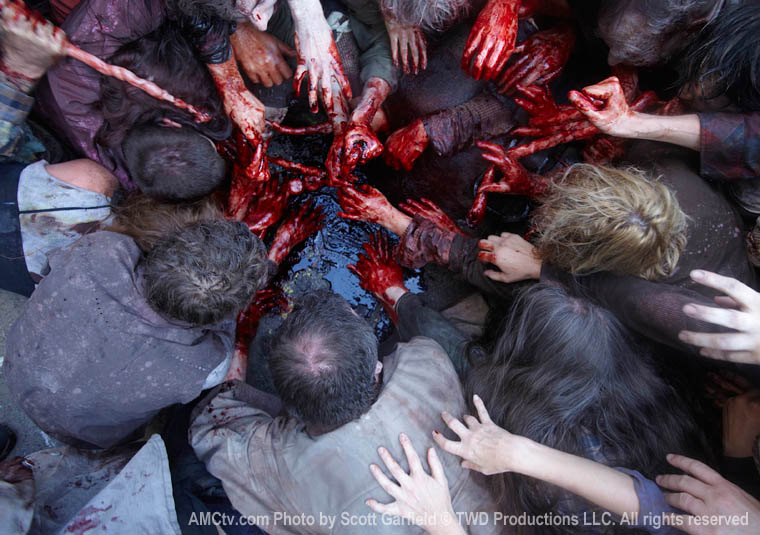 The Walking Dead Season 1 Episode Photos 20 - The Walking Dead Season 1 Episode Photos