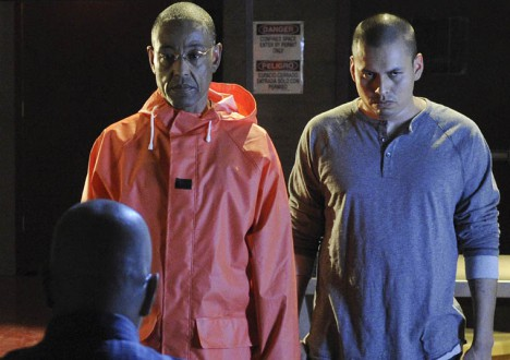 Breaking Bad Season 4 Episode Photos 3 - Breaking Bad Season 4 Episode Photos