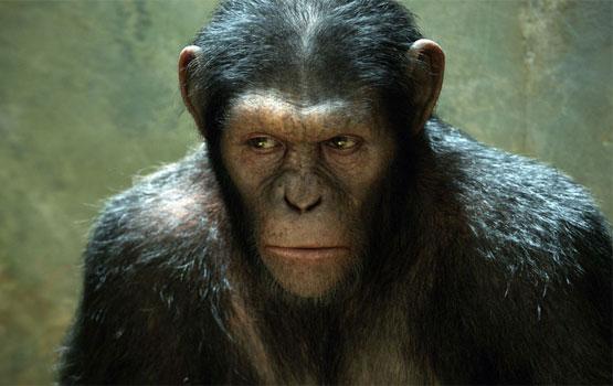 An Oscar for Andy Serkis