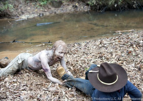 The Walking Dead Season 2 Episode Photos 109 - The Walking Dead Season 2 Episode Photos