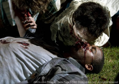 The Walking Dead Season 2 Episode Photos 95 - The Walking Dead Season 2 Episode Photos