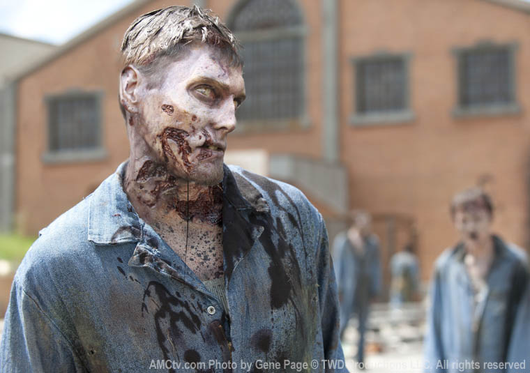 Walker - The Walking Dead