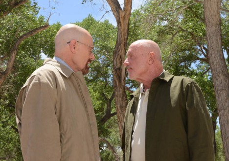 Breaking Bad Season 5 Episode Photos 73 - Breaking Bad Season 5 Episode Photos