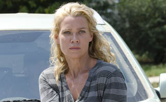 Laurie Holden Talks to <em>TV Guide</em>; <em>Variety</em> on <em>The Walking Dead</em> vs. <em>Downton Abbey</em>