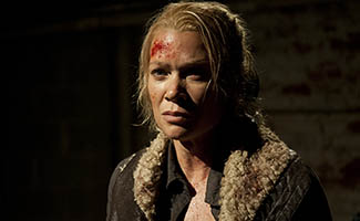 twd-s3-laurie-holden-interview-325.jpg