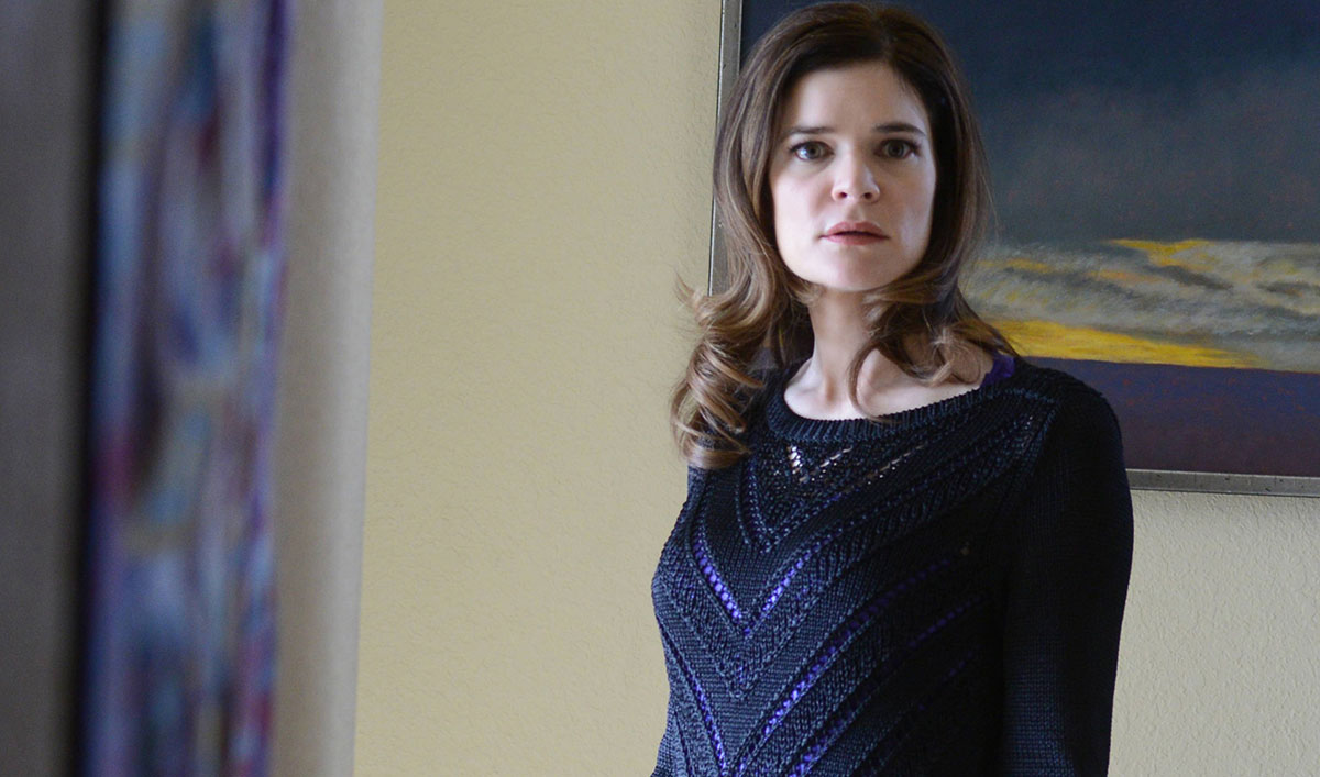 Betsy Brandt Books CBS Pilot; <em>Breaking Bad</em> Parody Tribute Video to Heisenberg