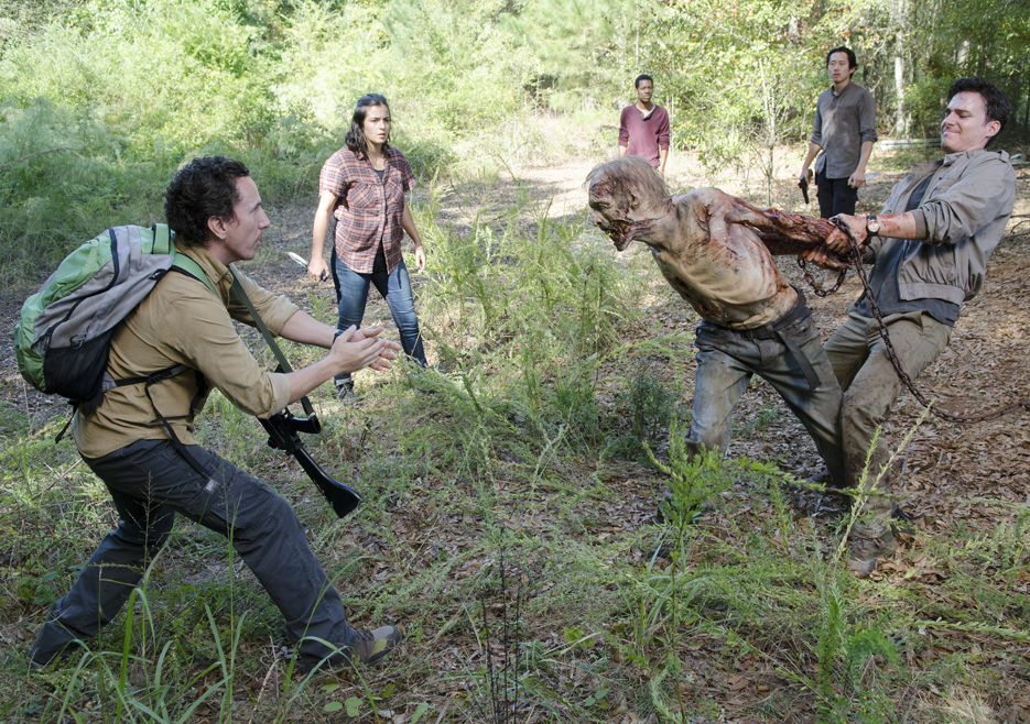The Walking Dead s05e12