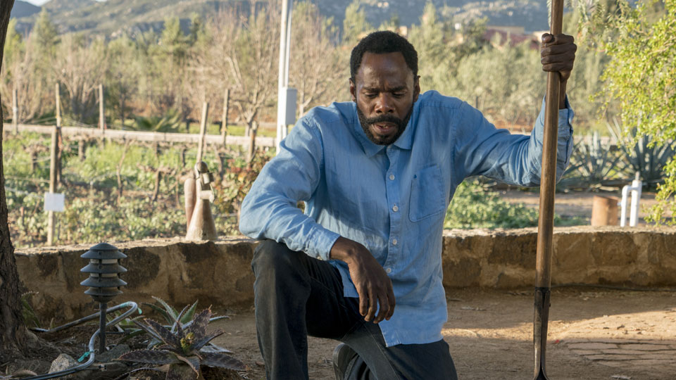 Victor Strand (Colman Domingo) en Episodio 7 Photo by Richard Foreman/AMC