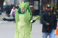 Watch Celery Stalk New York City, Looking for Acceptance