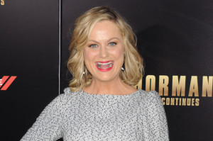 Here's the Best Part of Amy Poehler's Reddit AMA