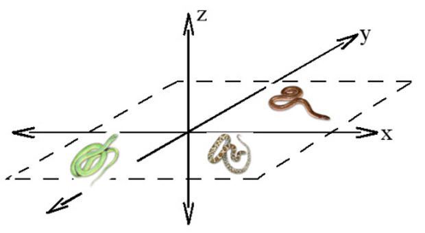 Snakes on a Plane Math