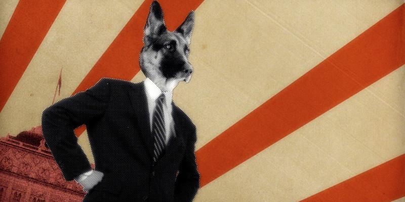 Dog President