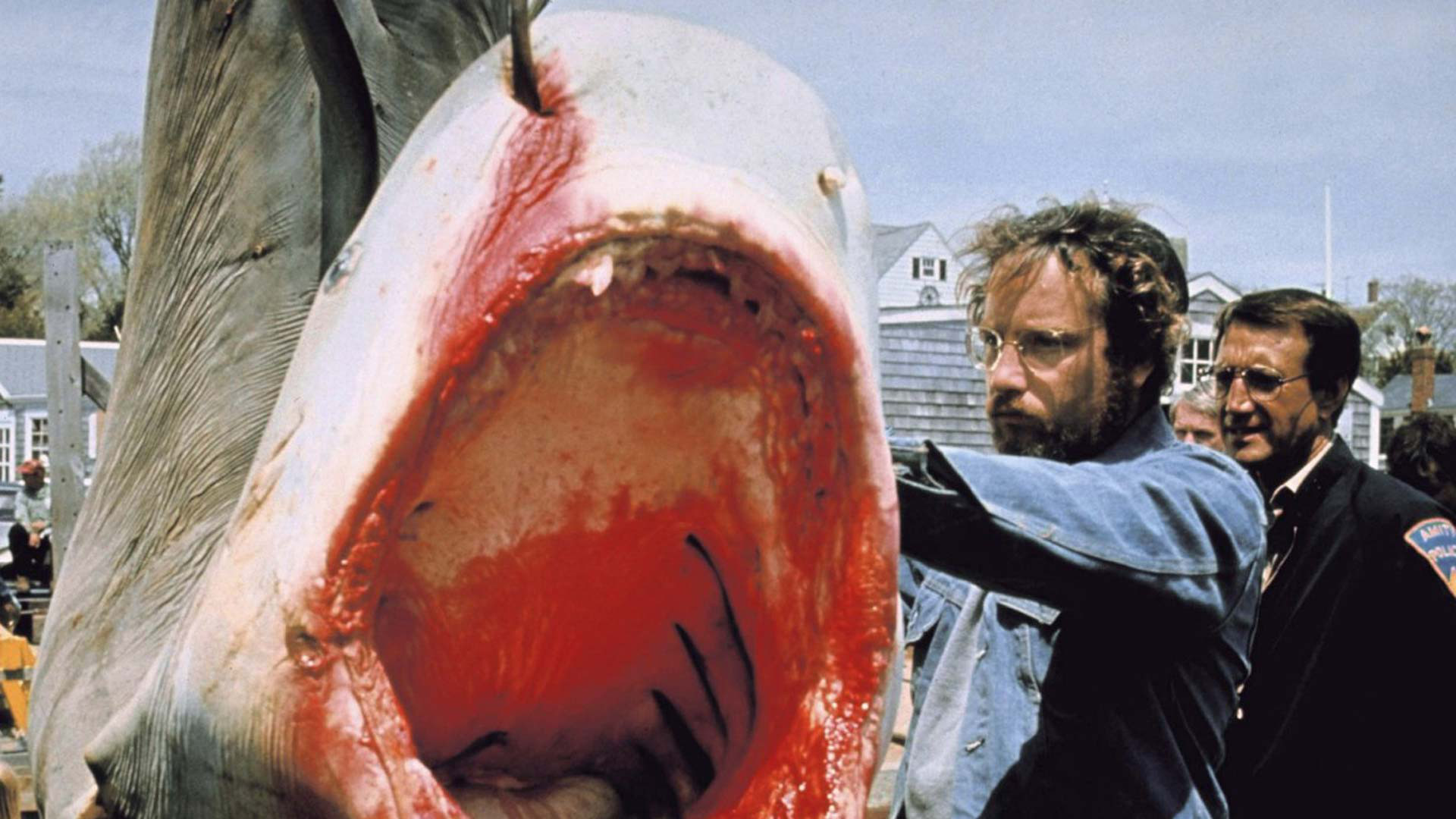 10 crazy facts you might not know about jaws � ifc