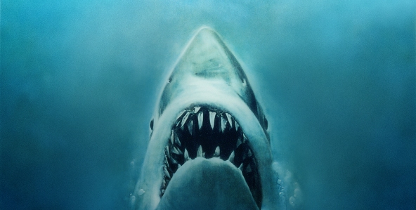 jaws_592x299-7