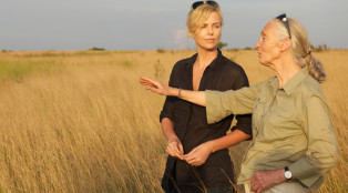 Iconoclasts-Charlize-Theron-Jane-Goodall-800x450