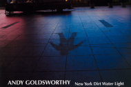 Andy Goldsworthy in NY