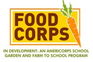 An Americorps for healthy school lunches