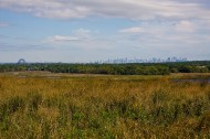 Public art to provide renewable power at Freshkills Park