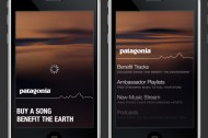 Buy music, support green non-profits: the Patagonia Music Collective