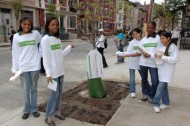 Tree planting = green jobs? MillionTreesNYC thinks so…