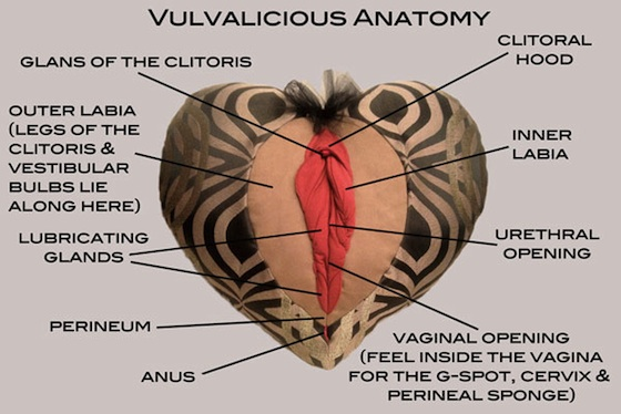 Vagina vs. vulva: There's a big difference, people – SundanceTV