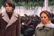 "What Does Wes Anderson Owe to ""Harold and Maude"" and 8 Other Influences?"