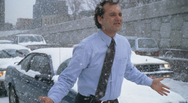 Four Bill Murray Movies You Must See Before You Die