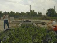 Justin Booz turns a Superfund site into a public food garden.