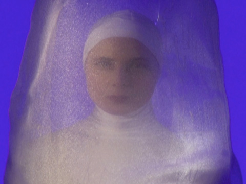 Isabella Rossellini takes an intimate look into the perilous life of a squid.
