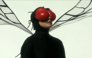 Isabella Rossellini explores the mating habits of the fly.