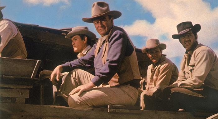 The Sons of Katie Elder 700x384