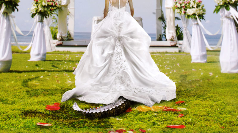 Bridezilla_keyart_showpage_1920x1080