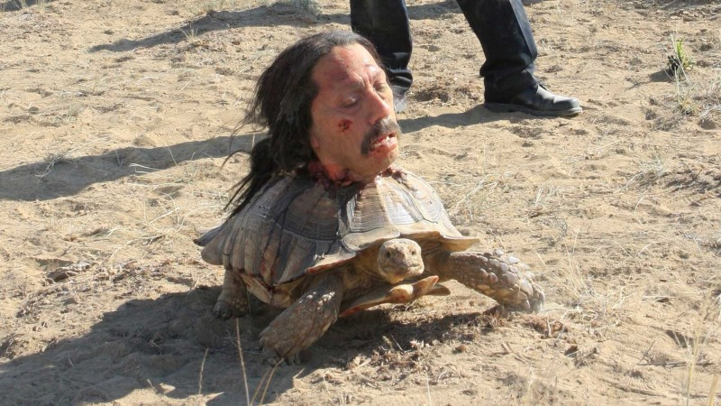 The Tortoise Scene: Inside Breaking Bad