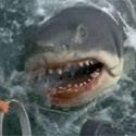 jaws-non-horror-125.jpg