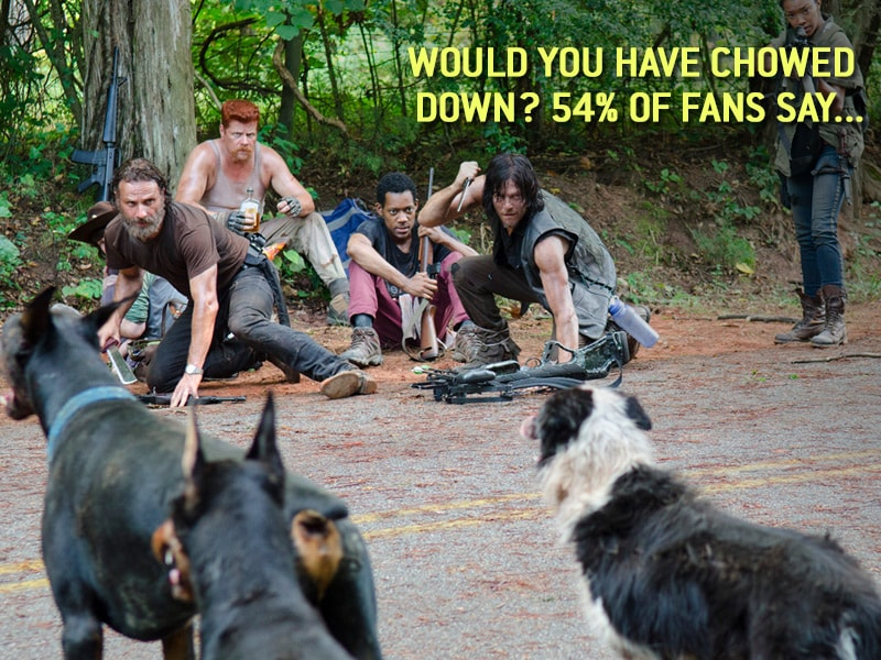 TWD-SS-Promo-Dogs-800×600-C