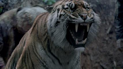 (SPOILERS) Talked About Scene from The Walking Dead: Season 8, Episode 4