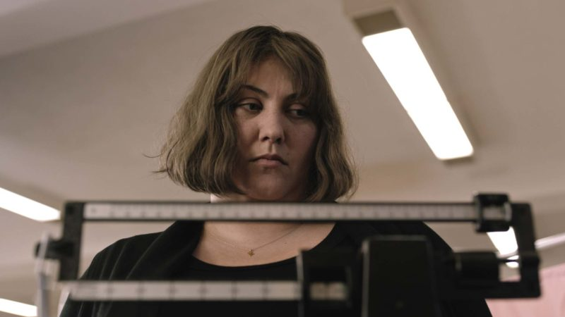 Dietland: A Look at the Series