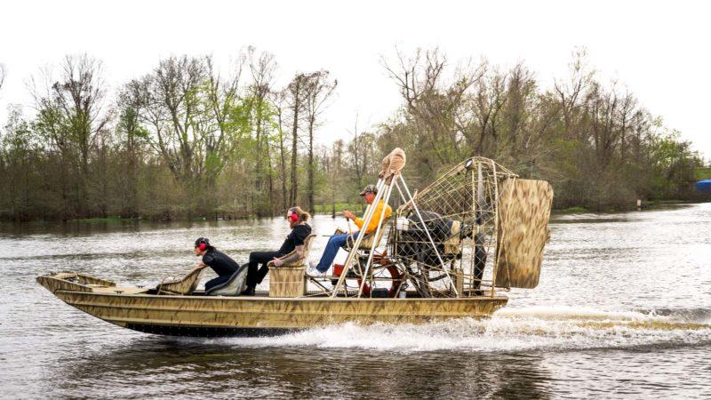 Louisiana: Crescent City