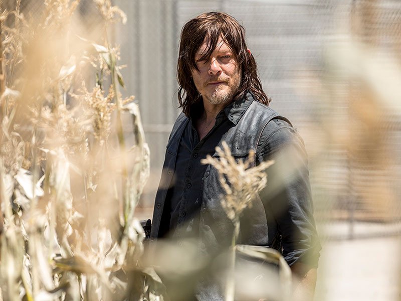 the-walking-dead-season-9-daryl-reedus-800×600