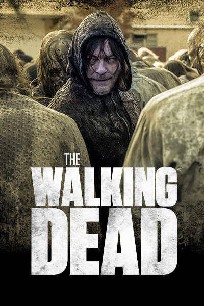 the walking dead season 2 online free