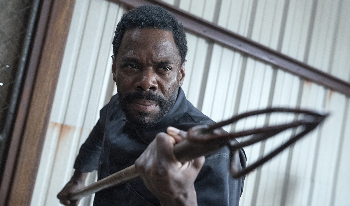 <em>Fear the Walking Dead</em> Q&A — Colman Domingo (Victor Strand)
