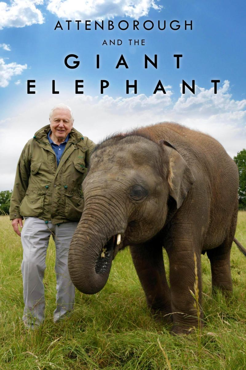 Attenborough_and_the_Giant_Elephant_2x3
