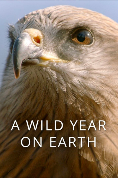 a-wild-year-on-earth
