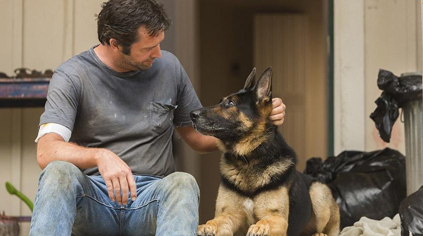 Hap-and-dog-1x06