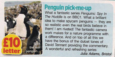 Penguin, TV Review