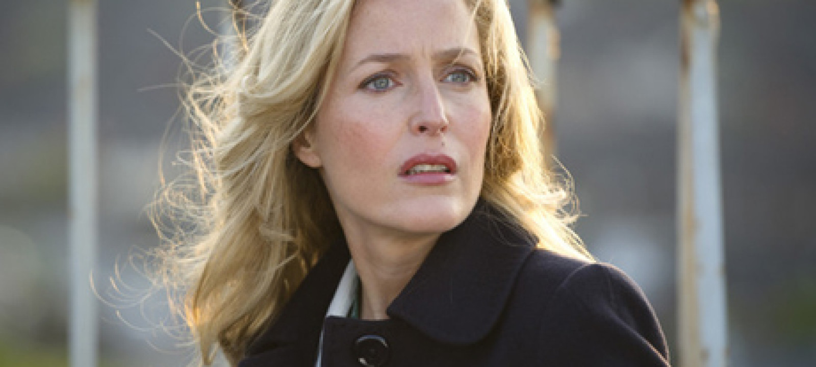 460x300_gilliananderson_thefall