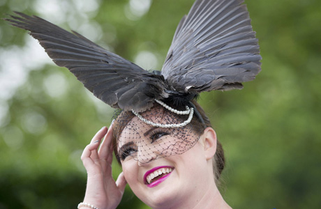 A bird has knocked this girl's hat off and is sitting on her head. Oh, wait? (AP)